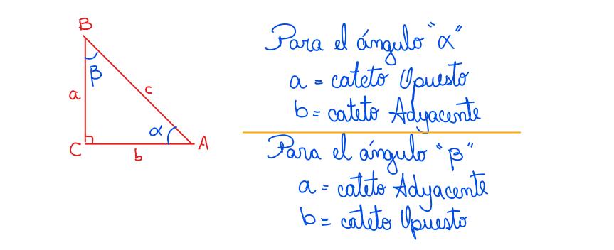 posición relativa de catetos