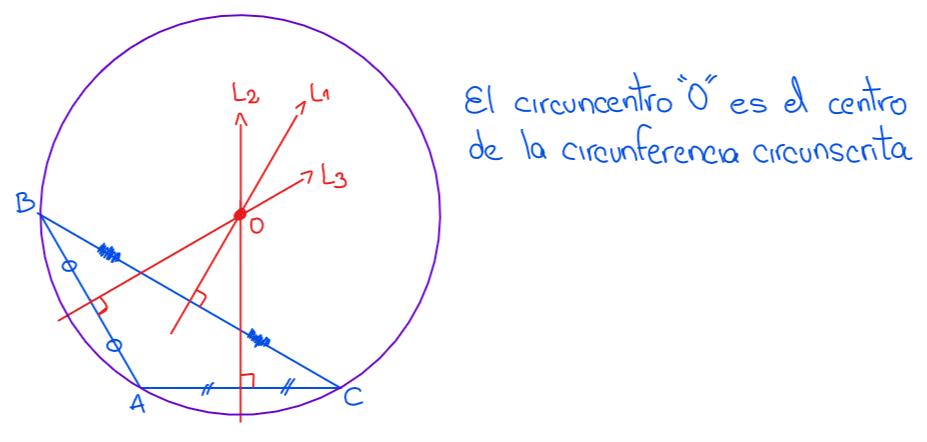 circuncentro en un triángulo obtusángulo