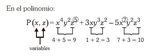 grado de un polinomio imagen 16