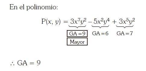 grado de un polinomio imagen 5