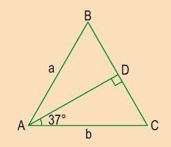 triángulos rectángulos notables imagen 44