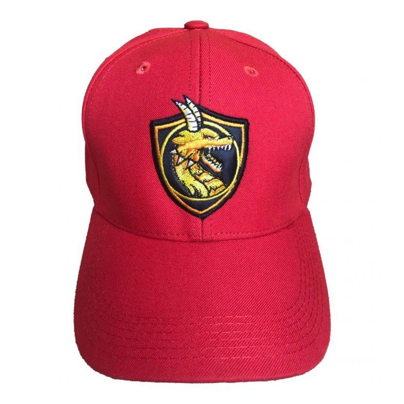 Gorro dragon Superior 2